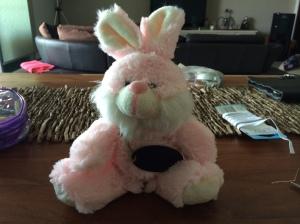 Energiser Bunny